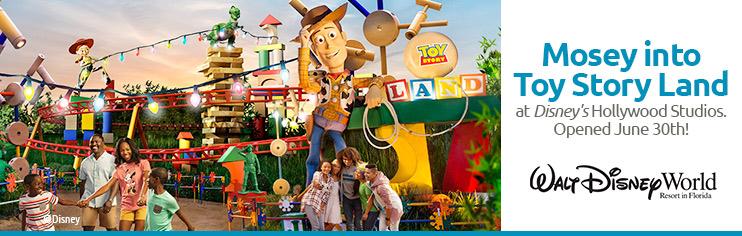 Disney Vacations